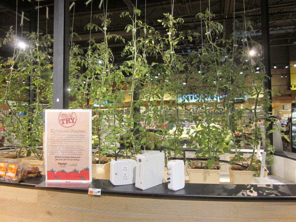 In July, Motorleaf debuted its in-store tomato case system in an upstate New York Price Chopper. The case is managed by Vermont Hydroponic Produce, which has since partnered with Motorleaf on a number of produce cases in New England schools. MOTORLEAF
